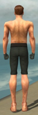 Mesmer Krytan Armor M gray arms legs back.jpg
