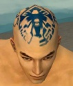 Monk Istani Armor M dyed head front.jpg