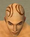 Monk Shing Jea Armor M dyed head front.jpg