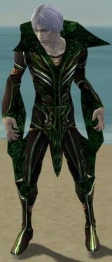 Necromancer Vabbian Armor M dyed front.jpg
