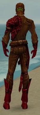Ranger Istani Armor M dyed back.jpg
