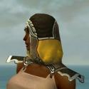 Dervish Asuran Armor F dyed head side.jpg