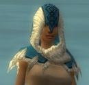 Dervish Norn Armor F dyed head front.jpg