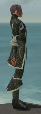 Elementalist Elite Canthan Armor M gray side.jpg