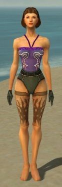 Mesmer Primeval Armor F gray arms legs front.jpg