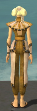 Monk Obsidian Armor F dyed back.jpg