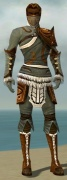Ranger Canthan Armor M gray front.jpg