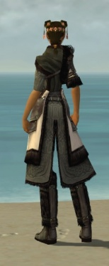 Ranger Norn Armor F gray chest feet back.jpg