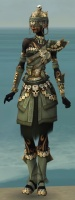 Ritualist Elite Imperial Armor F gray front.jpg