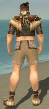 Monk Norn Armor M gray chest feet back.jpg