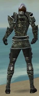 Necromancer Fanatic Armor M gray back.jpg