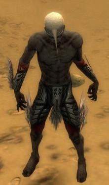 Necromancer Primeval Armor M gray arms legs front.jpg
