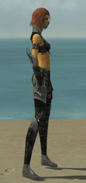 Assassin Luxon Armor F gray side.jpg