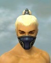 Assassin Norn Armor M gray head front.jpg