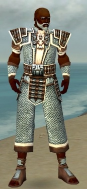 Monk Elite Judge Armor M dyed front.jpg