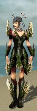 Necromancer Primeval Armor F dyed front.jpg