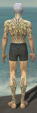 Necromancer Scar Pattern Armor M gray chest feet back.jpg