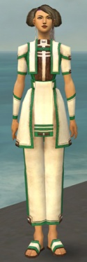 Monk Sacred Armor F dyed front.jpg
