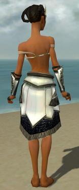 Paragon Obsidian Armor F gray arms legs back.jpg