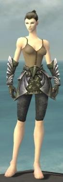 Warrior Templar Armor F gray arms legs front.jpg