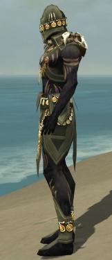 Ritualist Elite Kurzick Armor M gray side.jpg