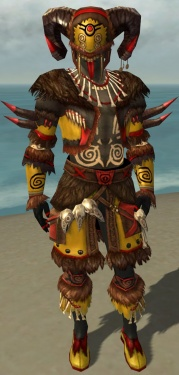 Ritualist Norn Armor M dyed front.jpg