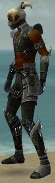 Assassin Luxon Armor M gray side.jpg