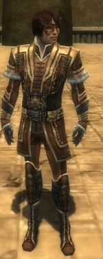 Mesmer Elite Sunspear Armor M dyed front.jpg