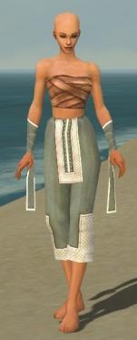 Monk Krytan Armor F gray arms legs front.jpg