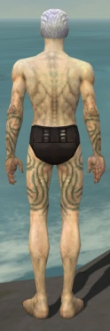 Necromancer Scar Pattern Armor M gray arms legs back.jpg