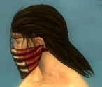 Ranger Primeval Armor M dyed head side.jpg