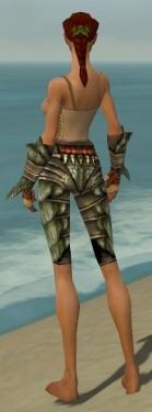 Ranger Elite Drakescale Armor F gray arms legs back.jpg