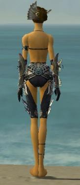 Assassin Asuran Armor F gray arms legs back.jpg