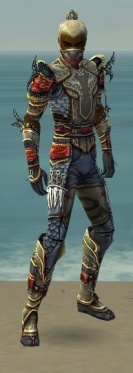 Assassin Monument Armor M gray front.jpg