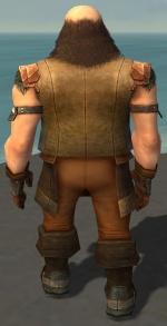 Ogden Stonehealer Armor Dwarven Back.jpg