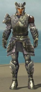 Warrior Templar Armor M gray front.jpg