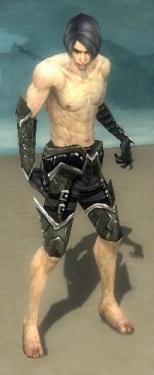 Necromancer Elite Profane Armor M gray arms legs front.jpg