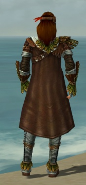 Ranger Druid Armor M gray back.jpg