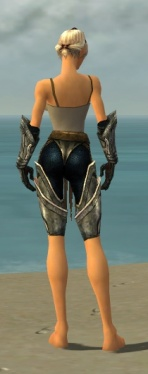 Warrior Elite Sunspear Armor F gray arms legs back.jpg