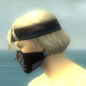 Assassin Kurzick Armor M gray head side.jpg