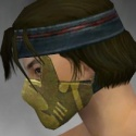 Assassin Seitung Armor M dyed head side.jpg