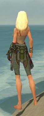 Ranger Elite Luxon Armor F gray arms legs back.jpg