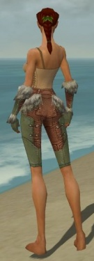 Ranger Fur-Lined Armor F gray arms legs back.jpg