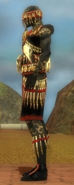 Ritualist Elite Canthan Armor M dyed side.jpg