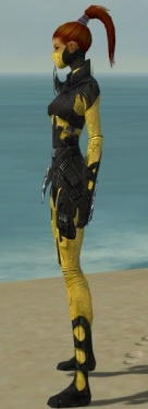 Assassin Kurzick Armor F dyed side.jpg
