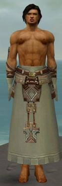 Dervish Istani Armor M gray arms legs front.jpg