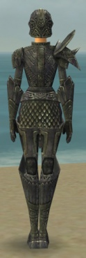 Warrior Elite Platemail Armor F gray back.jpg