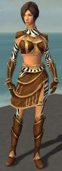 Acolyte Jin Primeval Armor Front.jpg