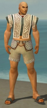 Monk Tyrian Armor M gray chest feet front.jpg