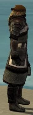Ranger Norn Armor M gray side.jpg